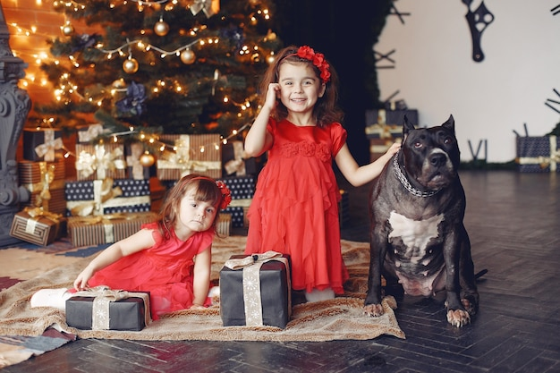 Gelukkig kind en hond met kerstcadeau. kind in een rode jurk. baby met plezier met hond thuis. xmas vakantie concept
