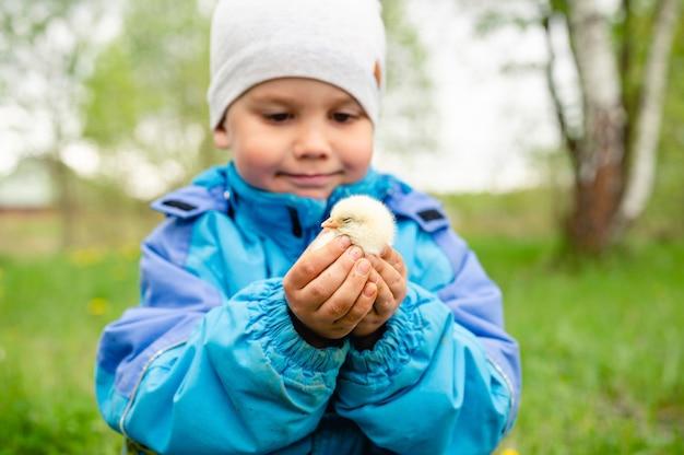 Gelukkig kind jongen kleine boer houdt een baby kip in zijn handen in de natuur buiten. landelijke stijl