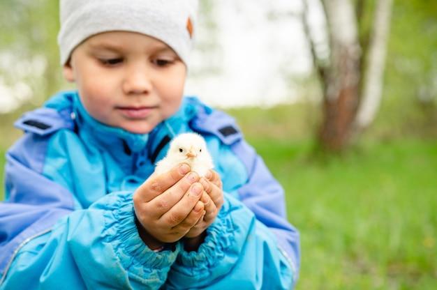 Gelukkig kind jongen kleine boer houdt een pasgeboren baby kip in zijn handen in de natuur buiten. landelijke stijl