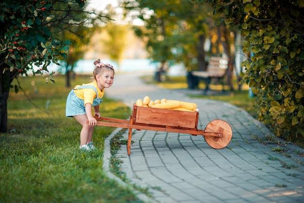 Gelukkig kind met gele maïskolven in de kruiwagen. mooi babymeisje met maïskolven. blij kind. de herfstgewas in de houten kruiwagen.