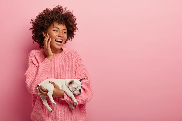 Gelukkig lachend vreugdevolle donkere vrouw draagt kleine slapende franse bulldog puppy, draagt roze trui, gefocust opzij, in hoge geest, geïsoleerd over roze muur. monochroom. huisdieren concept