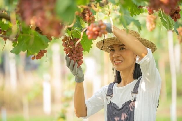 Gelukkig lachend vrolijk wijngaardwijfje dat overall en een strohoed van de landbouwbedrijfkleding draagt