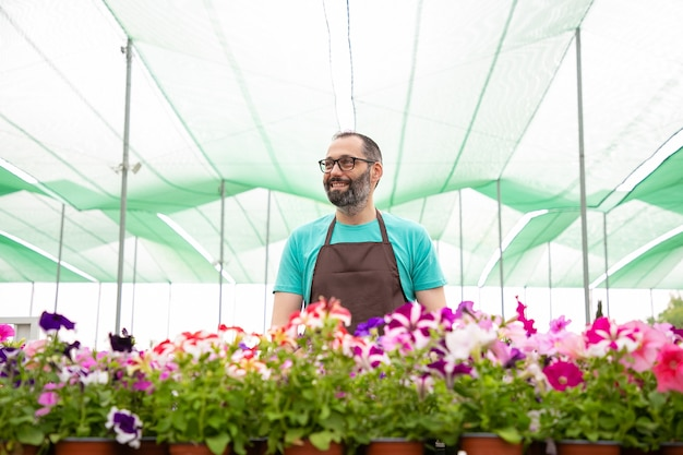 Gelukkig mannelijke tuinman permanent in de buurt van petunia planten in de tuin en wegkijken