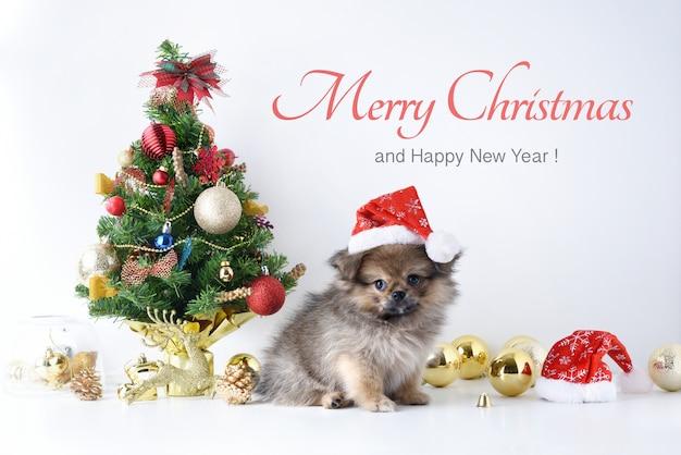 Gelukkig nieuwjaar, kerstmis, hond in santa claus-hoed, vieringsballen en andere decoratie