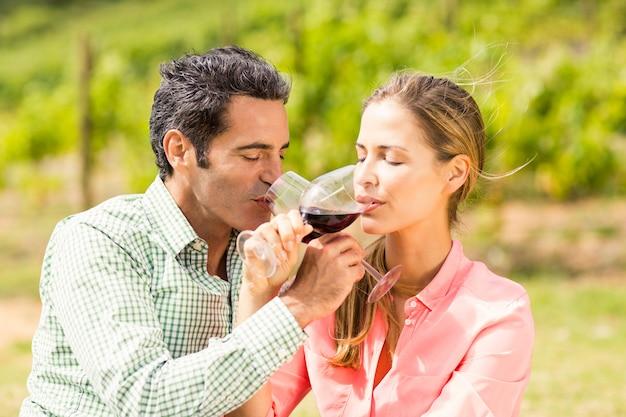Gelukkig paar dat wijn heeft