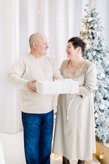 Gelukkig paar van middelbare leeftijd met geschenkdoos terwijl poseren in de buurt van de kerstboom