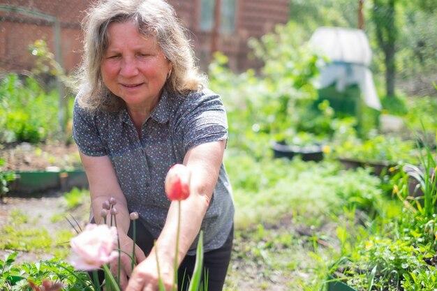 Gelukkig senior blanke vrouw werken met bloemen bloeien in de zomertuin.