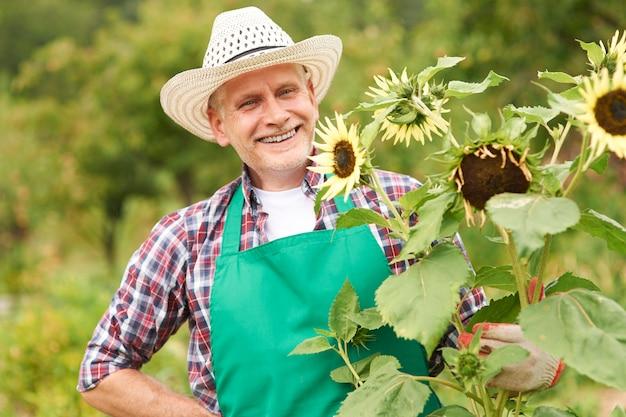 Gelukkig volwassen man met zonnebloem in de tuin