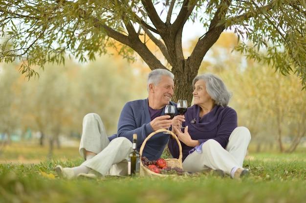 Gelukkig volwassen paar met een picknick in het park in de herfst