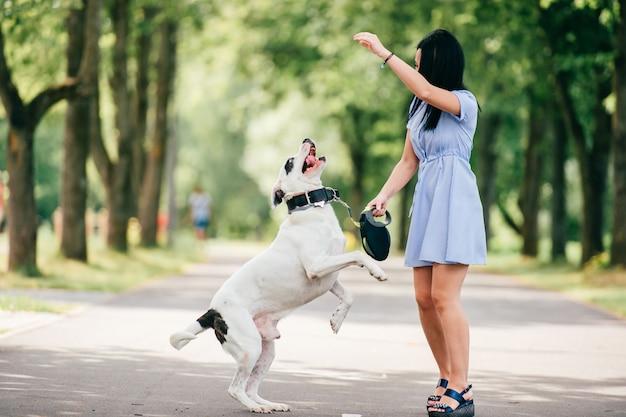 Gelukkig vrolijk donkerbruin meisje in het blauwe de zomerkleding spelen met grote jachthond in park