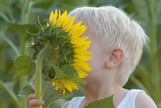 Gelukkig weinig blonde jongen die een zonnebloembloem snuiven op groen gebied.