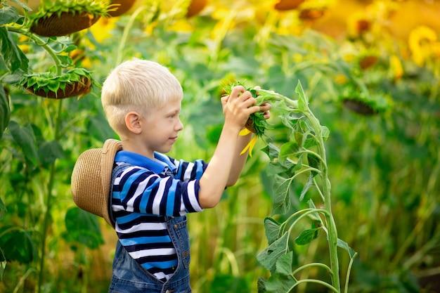 Gelukkige blonde jongen staat in een veld met zonnebloemen in de zomer, de levensstijl van kinderen.