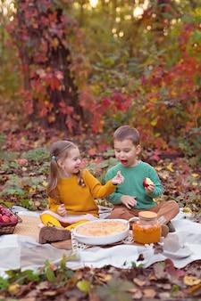 Gelukkige broers en zussen met een picknick in de natuur