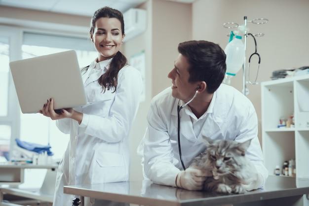 Gelukkige dierenartsen die kat in dierenartsbureau onderzoeken.