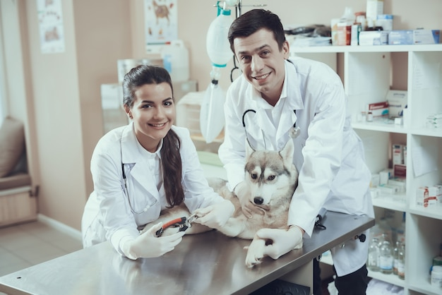 Gelukkige dierenartsen trimmer hondennagels knippen.