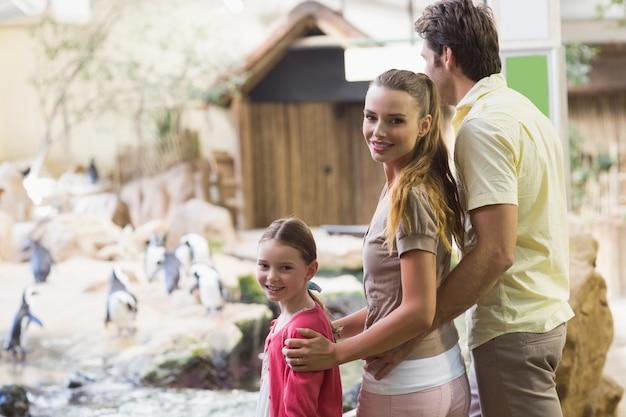 Gelukkige familie die pinguïnen bekijkt