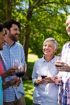 Gelukkige familie die terwijl het hebben van rode wijn in park op elkaar inwerken