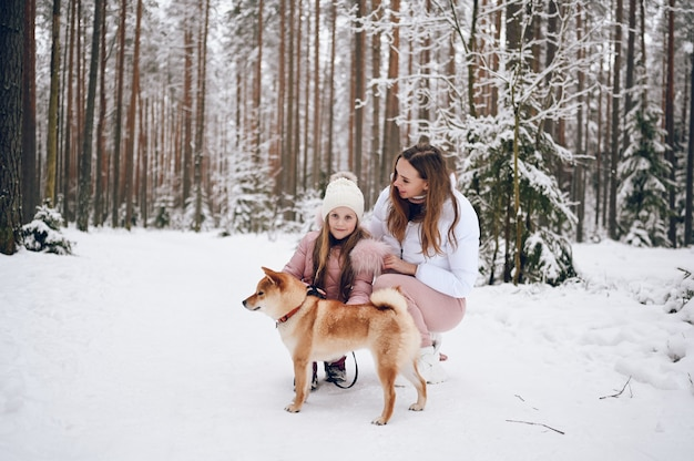 Gelukkige familie jonge moeder en schattig meisje in roze warme uitloper wandelen met plezier met rode shiba inu hond in besneeuwde witte koude winter forest buitenshuis