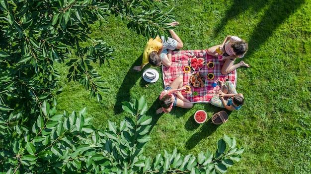 Gelukkige familie met kinderen die picknick in park hebben, ouders met jonge geitjes die op tuingras zitten en gezonde maaltijden in openlucht eten