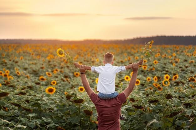 Gelukkige familie: vader met zijn zoon op de schouders die zich op zonnebloemgebied bij zonsondergang bevinden. achteraanzicht.
