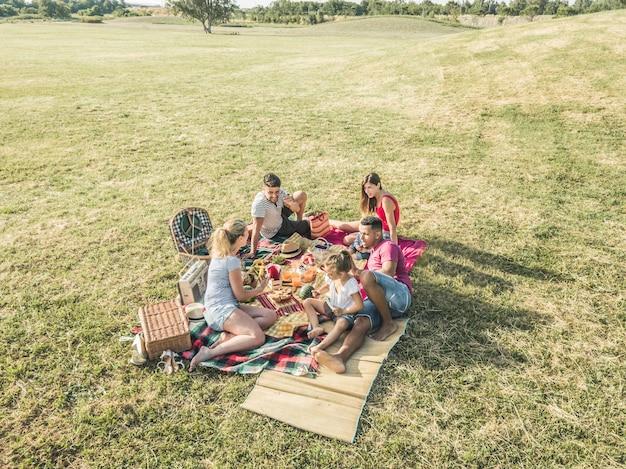 Gelukkige families die picknick in park doen openlucht
