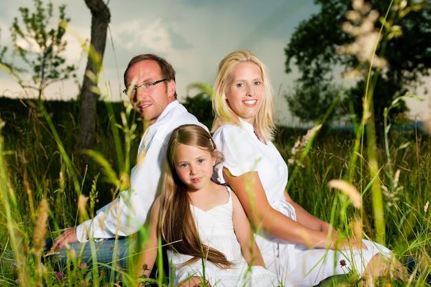 Gelukkige familiezitting in weide
