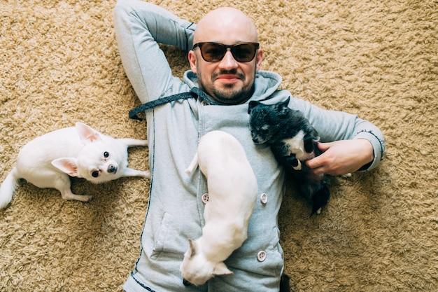 Gelukkige gebaarde kale mens in zonnebril die thuis op tapijt met drie kleine chihuahua-puppy liggen.