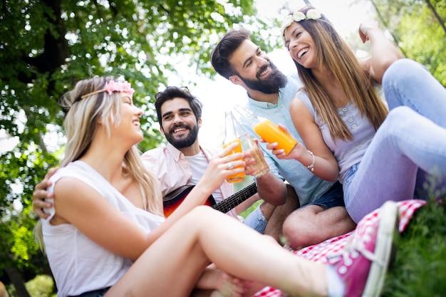 Gelukkige groep vrienden in het park met picknick op een zonnige dag.