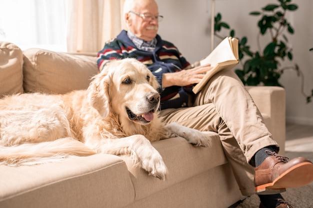 Gelukkige hond op bank met oude man