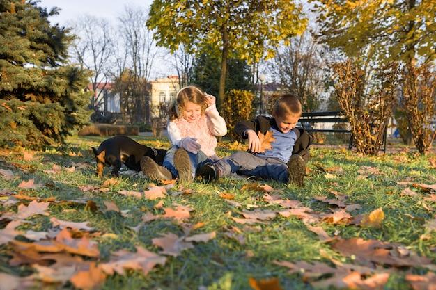Gelukkige jonge geitjes die met hond in zonnig de herfstpark spelen