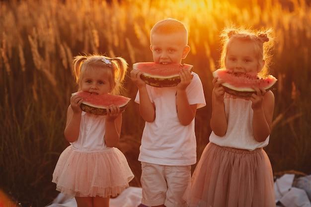 Gelukkige jonge geitjes die watermeloen in de zomer eten bij zonsondergang