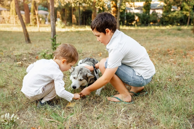 Gelukkige jonge jongens die zijn hond liefdevol knuffelen bij zonsondergang. diergeneeskunde, dierenverzorging. schattige kinderen met hond wandelen in het park