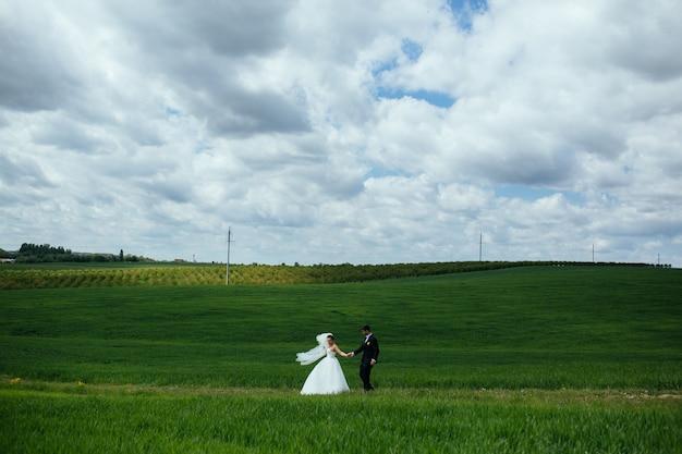 Gelukkige jonggehuwden in de wei