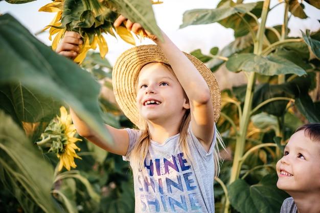 Gelukkige kinderen tussen enorme zonnebloemen in het zonnebloemveld op het platteland