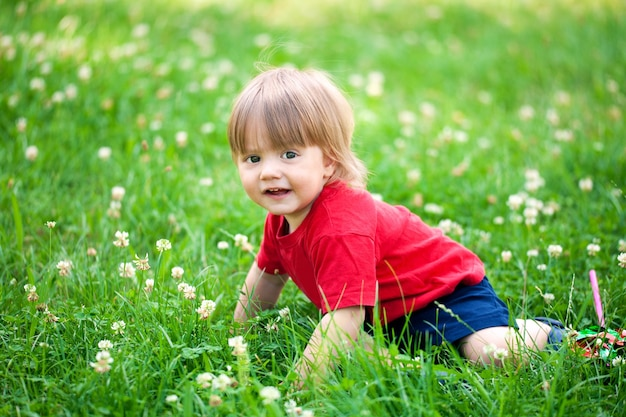 Gelukkige kleine jongen die in het gras kruipt