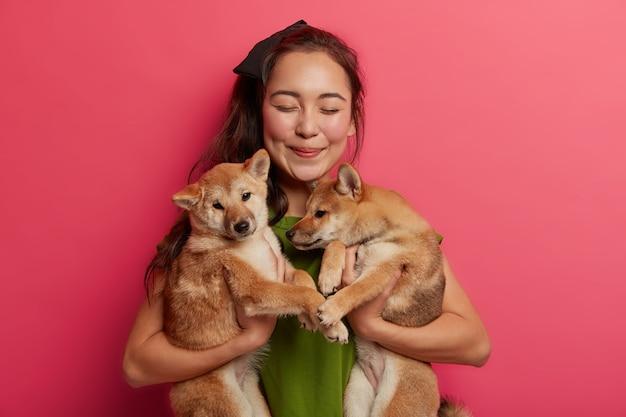 Gelukkige oosterse vrouw vond twee stamboompuppy's op straat, vindt gastheer voor shiba inu-honden, als dierenliefhebber, is blij met dieren tegen een roze achtergrond.