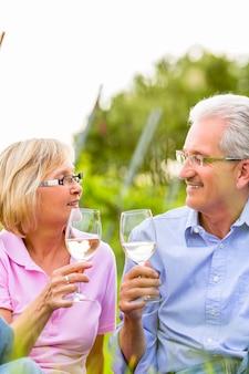 Gelukkige oudsten die picknick het drinken wijn hebben
