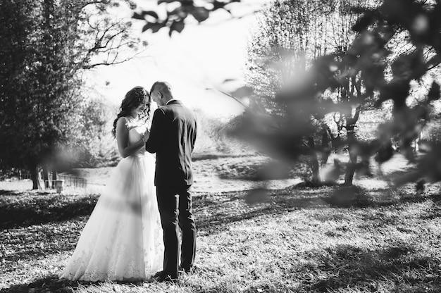 Gelukkige paar bruiden wandelen in herfst park