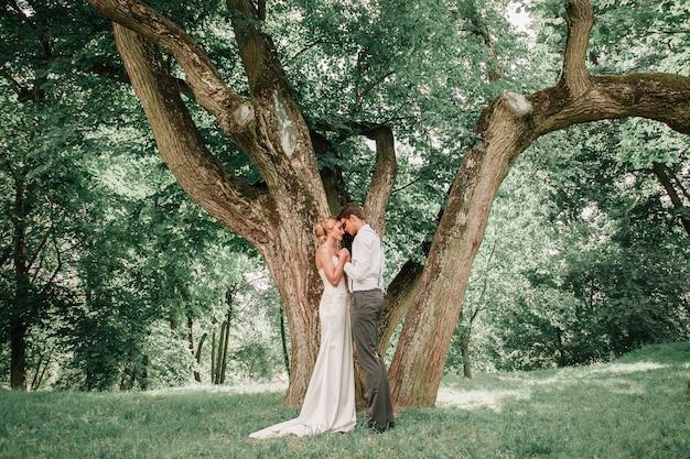 Gelukkige pasgetrouwden kussen in de buurt van een grote boom die zich verspreidt. romantisch moment