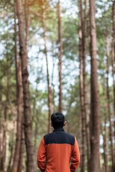Gelukkige reiziger man achteraanzicht staan en kijken naar een wazig dennenboom bos achtergrond