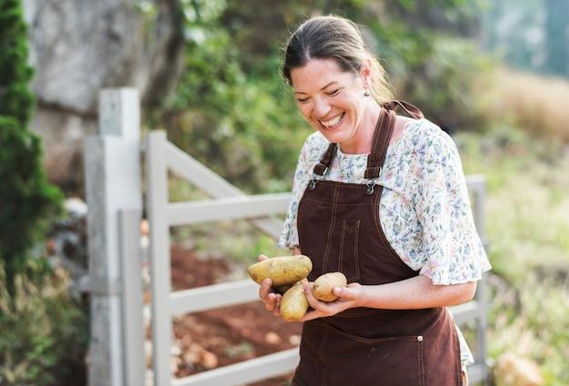 Gelukkige vrouw die aardappelen verzamelt op een boerderij