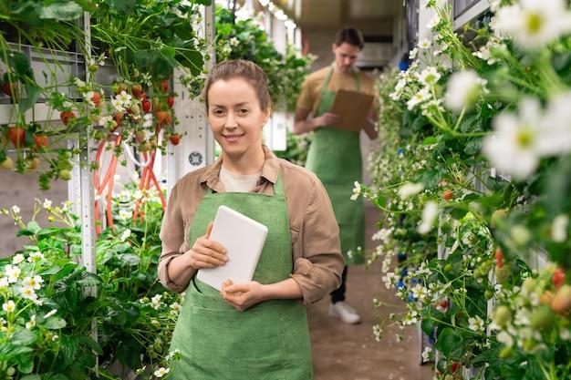 Gelukkige vrouw die digitale tablet vasthoudt terwijl ze in een verticale boerderij werkt