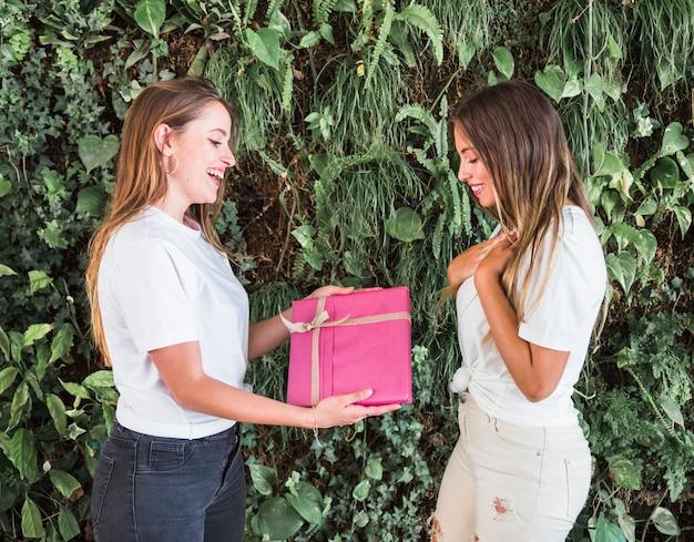 Gelukkige vrouw die gift geeft aan haar vrouwelijke vriend