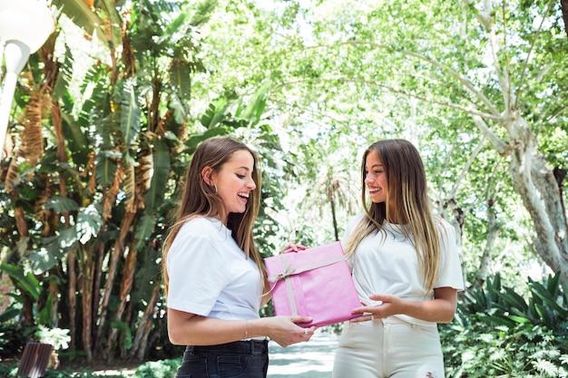 Gelukkige vrouw die roze giftdoos geeft aan haar vriend in park