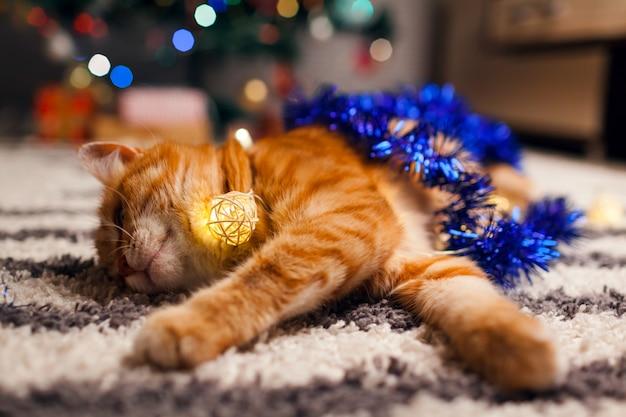 Gemberkat het spelen met slinger en klatergoud onder kerstboom. kerstmis en nieuwjaar concept