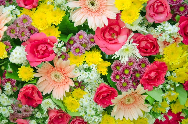 Gemengde flora