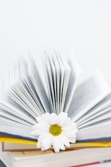 Geopend boek met vloer