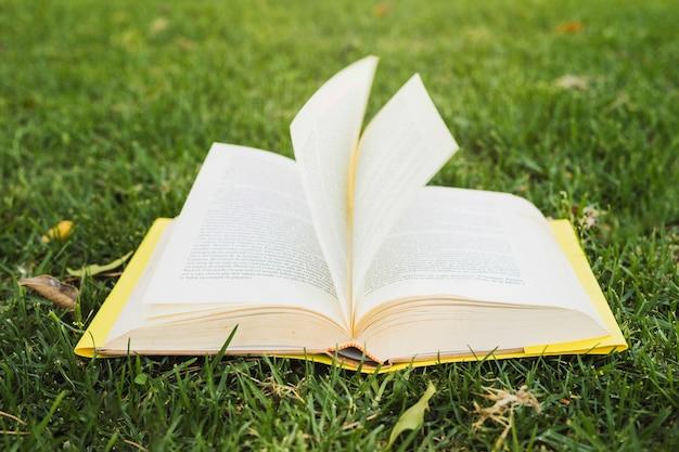 Geopend boek op groen gras