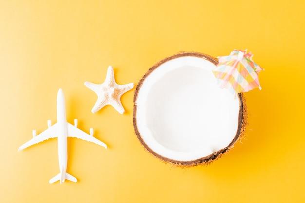 Geopende kokosnoot met zeester en vliegtuig