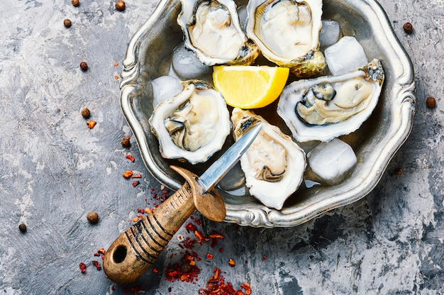 Geopende oesters op metalen plaat